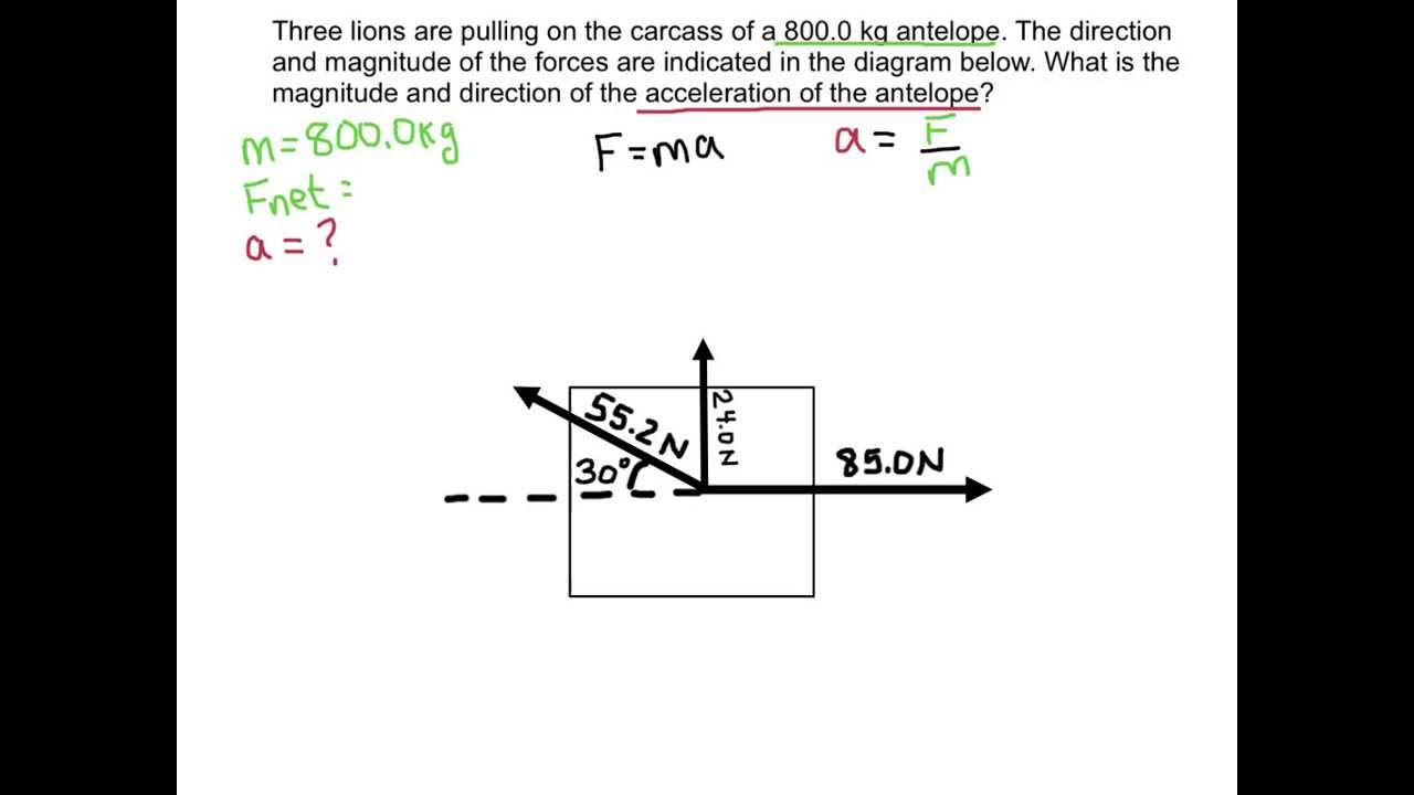 Spice of Lyfe: Formula Of Net Force In Physics