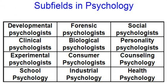 types psychology become a psychologist in uk